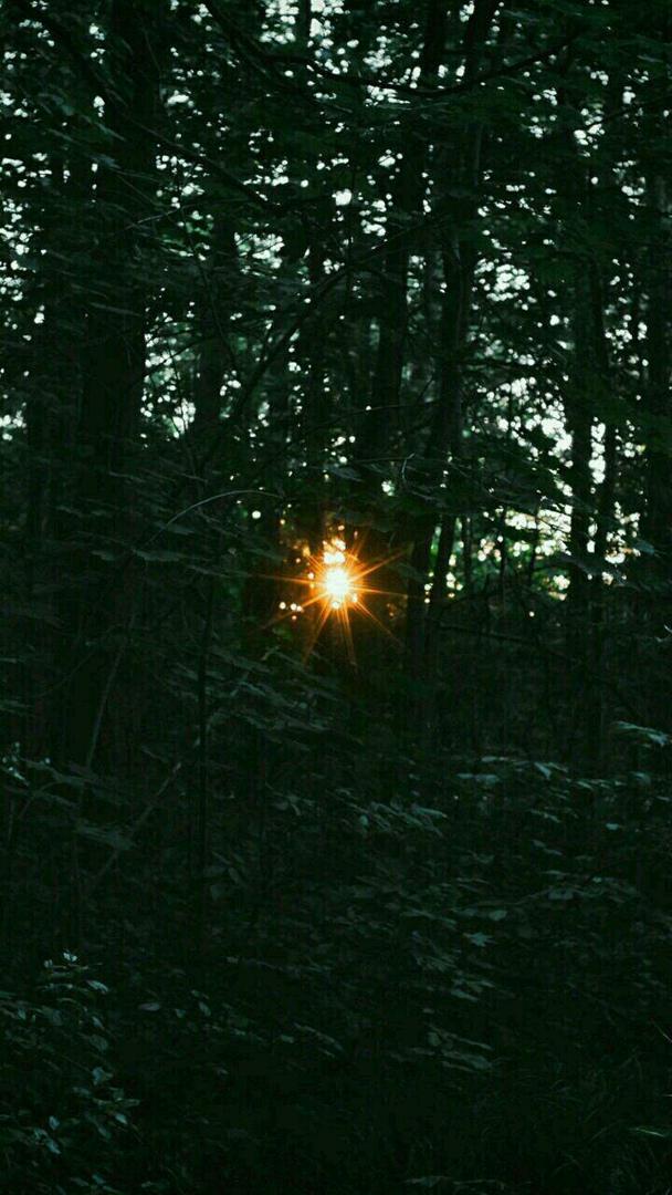 фото из альбома Луки Алексеева №6