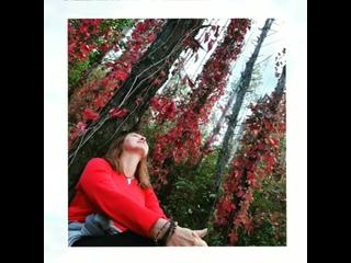 Не грусти.. это просто листья меняют цвет..Просто солнца накал понизил свой градус..Твоего навсегда.. ничего в этом мире нет..