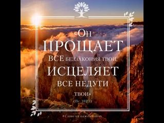 Один раз включи и уйдут все болезни! и стихи-отзвук Александра Тимшина