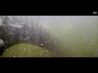 Хищные воды: Западня (Black Water: Abyss) (2020) трейлер русский язык HD / Эндрю Трауки /
