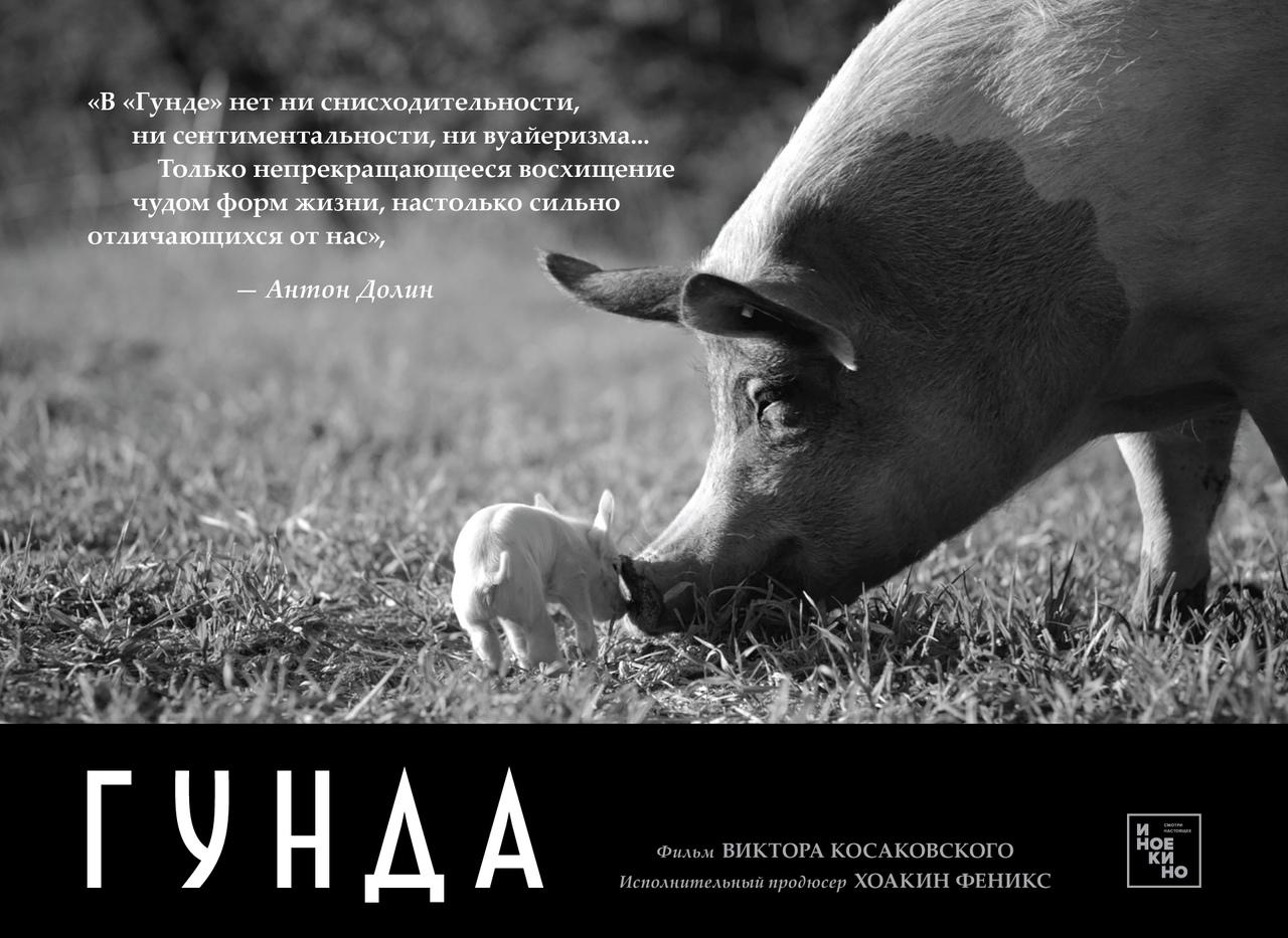 «Если в предыдущем фильме, неописуемо эффектной «Акварели», Косаковский предпочи...