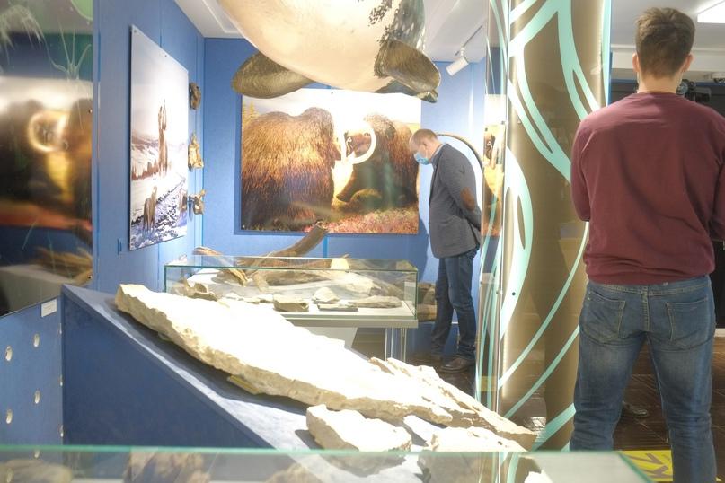 В Ухте открылся Туристско-информационный центр, изображение №5