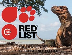 «Красная книга» против эволюции