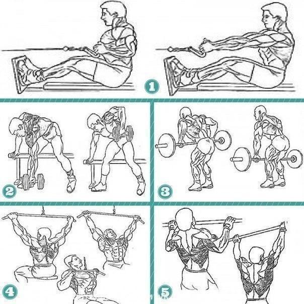 Тoп 5 упpaжнeний для мышц cпины