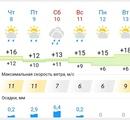 Прогноз погоды на ближайшие дни. Не очень радостно, конечно 🤔 #проводите_время_с_пользой #конный_дво