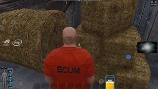 Dread's stream | Scum / Superliminal |  [2]