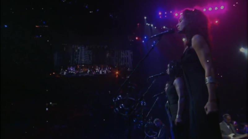 Roger Waters Dogs In The Flesh Live Voces Jon Carin Roger Waters Doyle Bramhall IIGuitarra acústica Jon CarinGuitarr