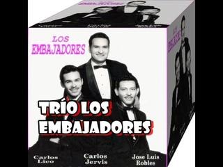 TRÍO LOS EMBAJADORES  artistas  de música popular son de origen ecuatoriano