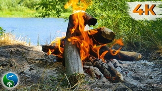 BEST relaxing campfire with crackling fire sounds, soothing relaxation, Burning fire 4K