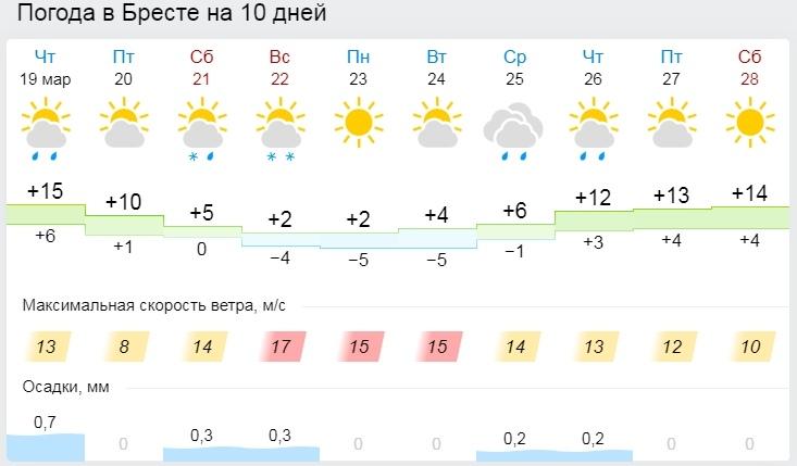 Порывистый ветер и ночные заморозки ожидаются в Беларуси в выходные. А потом - лето