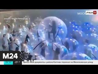 Новая реальность: как в США прошел первый концерт в пузырях - Москва 24