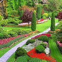 Ландшафт. Дизайн. Цветоводство. Садоводство.