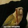 Карина Поликарпова