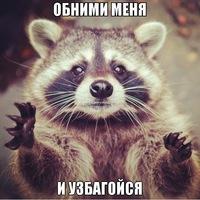 Енот Узбагоивный
