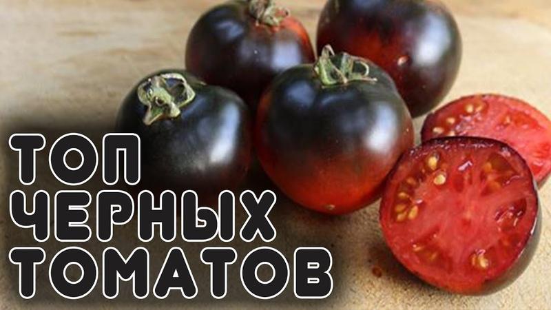 Лучшая 20-ка черных томатов и перцев