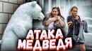 Белый медведь сбежал из зоопарка ПРАНК / Вджобыватели подстава
