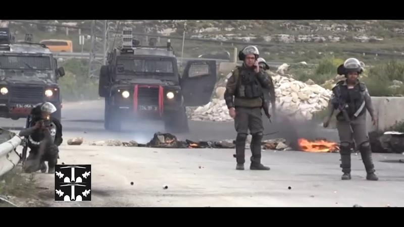 🔴Cemex detrás de muro israelí Cementra Mexicana Cemex segrega a palestinos Medio Oriente Agosto 2020