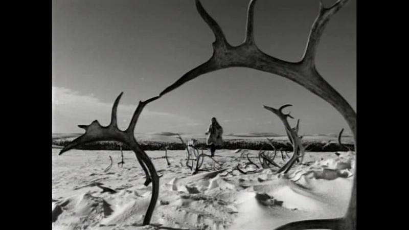 жертвоприношение Белый олень 1952