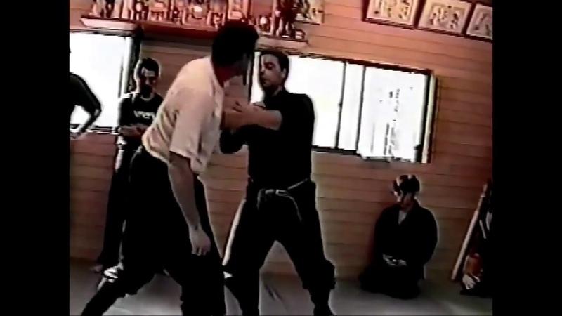 Kihon Happo with a feeling of Gikan Ryu (Bujinkan)