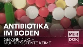 MISSION: WELT RETTEN! Antibiotika im Boden   MDR DOK