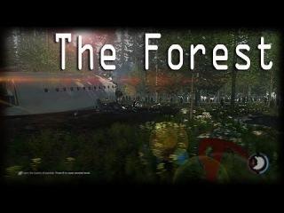 The Forest   Одним глазком