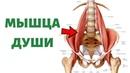 Как расслабить поясничную мышцу   Psoas release