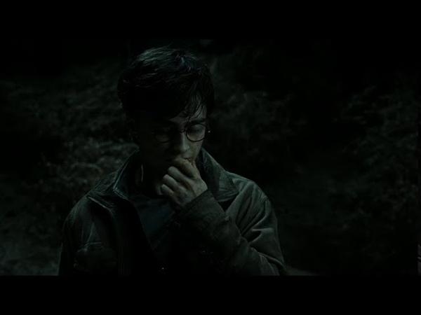Я открываюсь под конец Гарри бросил воскрешающий камень в запретном лесу