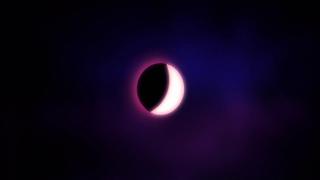 BLACK OPIUM EAU DE PARFUM DIGITAL ASSET 15s with sound